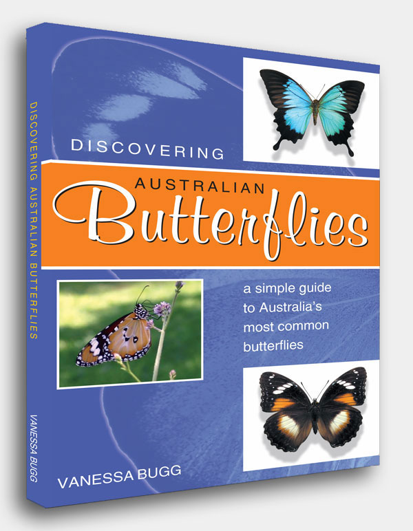 Discovering Australian Butterflies - Vanessa Bugg